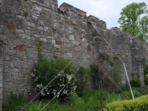 Ruthin Castle Conservation